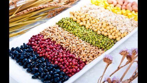 Các loại ngũ cốc cho người phổi tắc nghẽn mạn tính
